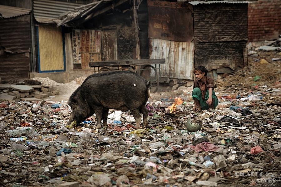 India_2010_283